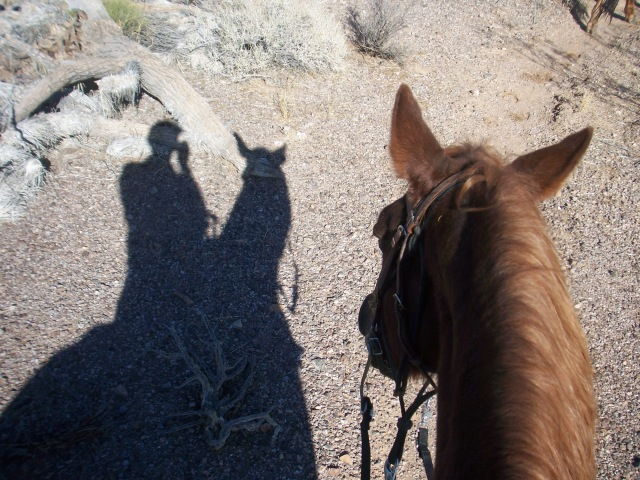 Stagecoach Ranch, Arizona
