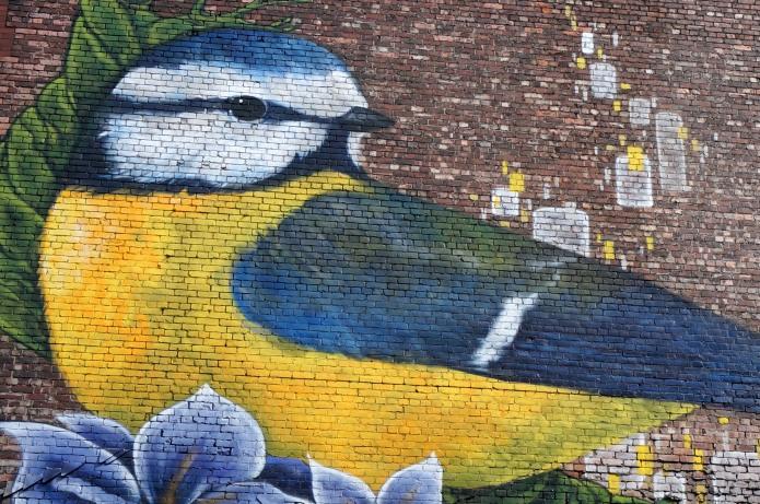 Blue Tit urban art, Manchester