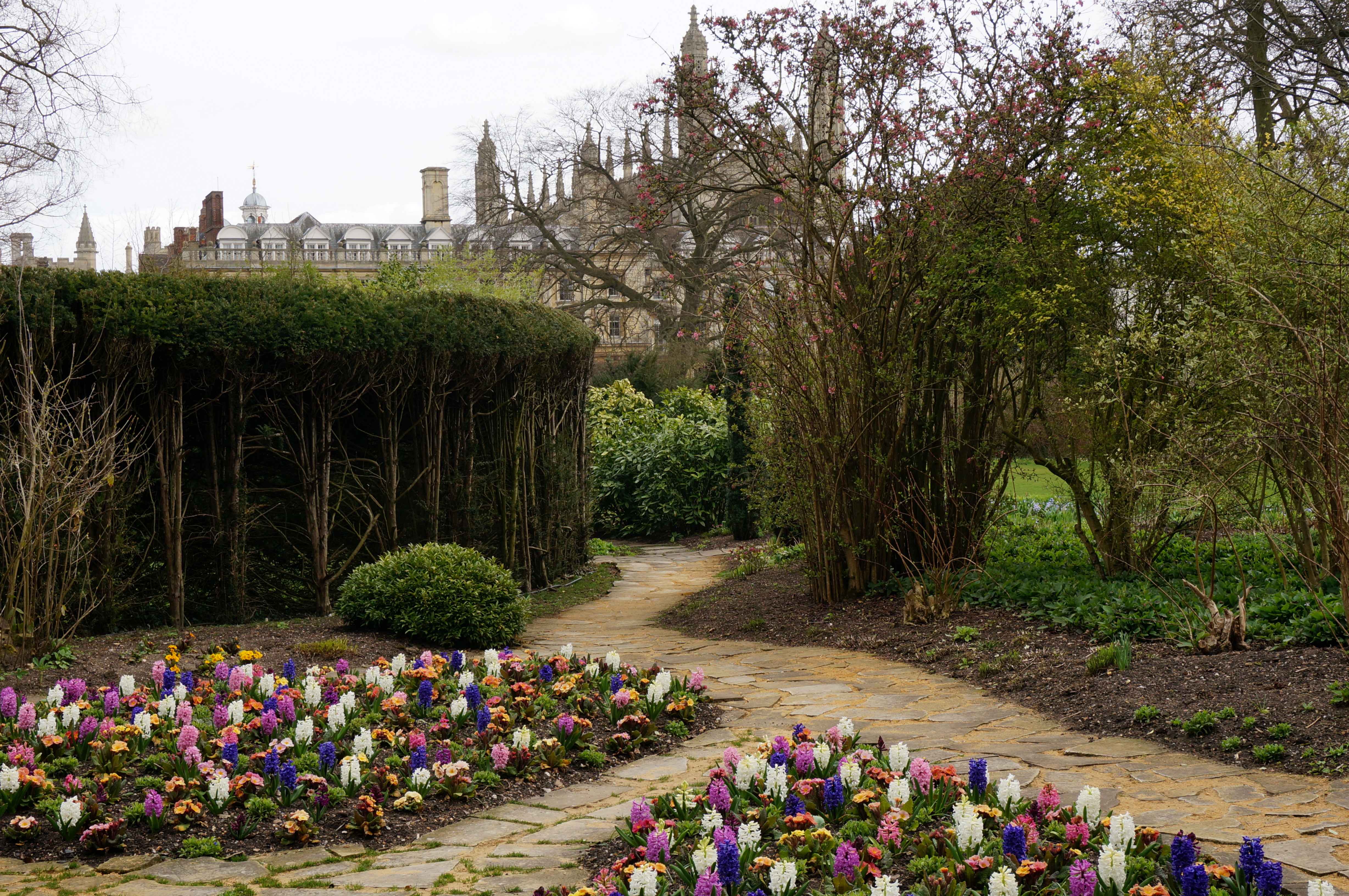 Clare College Gardens – Travel with Intent