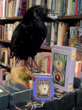 Stuffed crow