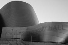 Disney Concert Hall -Week 4