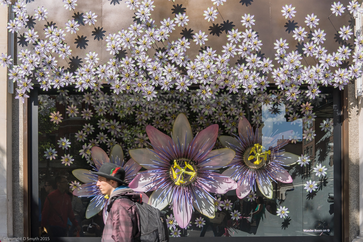 Apple Takes Over Selfridges Windows Travel With Intent