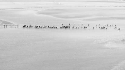 The sands around Mont St Michel