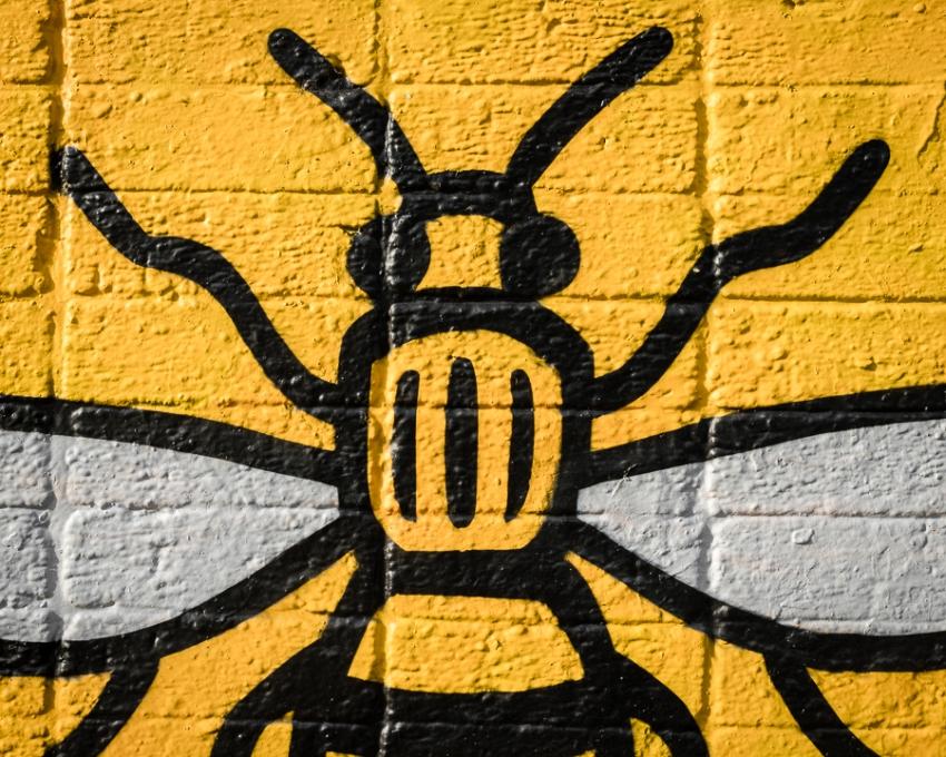 ManchesterDSC0766820170902-1-2.jpg