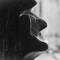 Solemn profile