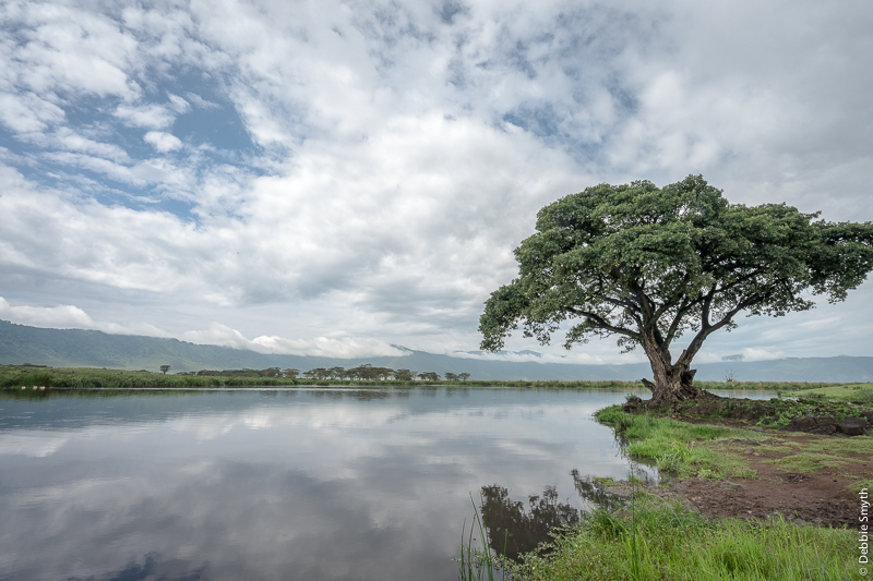 TanzaniaA9A0142620180126-1