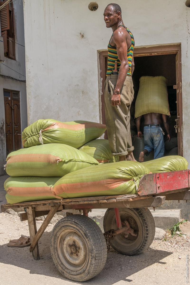 ZanzibarA730118120170130-1