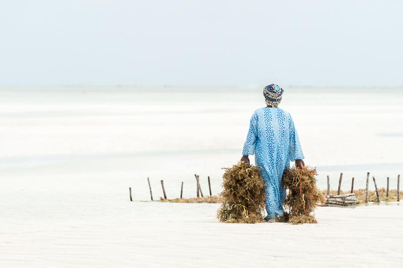 ZanzibarA9A0265220180201-1