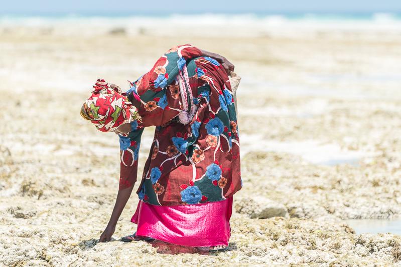 ZanzibarA9A0279620180202-1