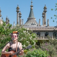 Great entertainment at the Royal Pavilion