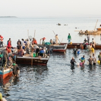 Watery livelihood