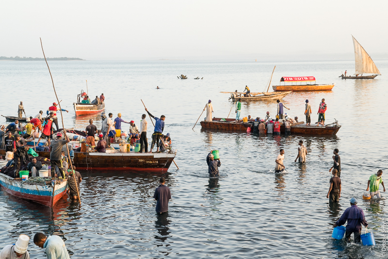ZanzibarA730101820170130-1