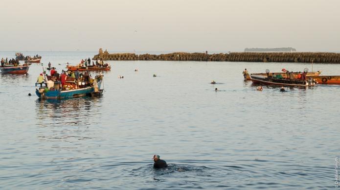 ZanzibarA730102020170130-1