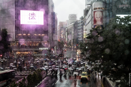 Shibuya Scramble, Tokyo