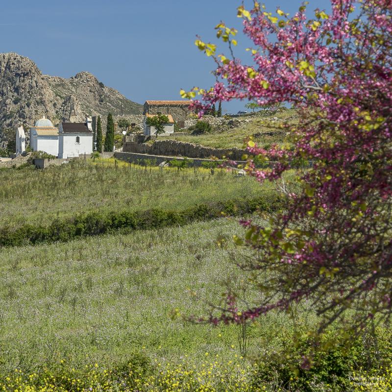 20160504_Corsica_12903465-1-2