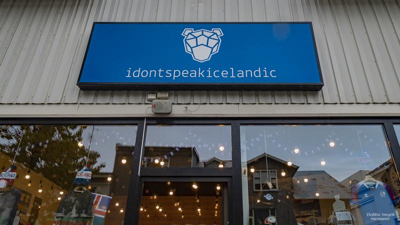 ReykjavikA9A0112420180211-1-2.jpg