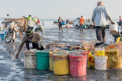 ZanzibarA730103720170130-1-2