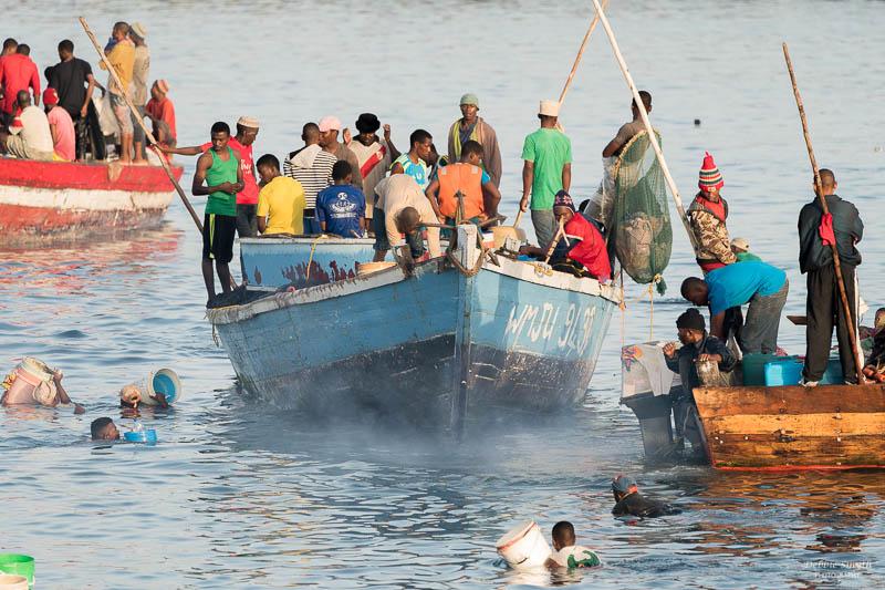 ZanzibarA9A0243520180130-1-2