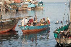 ZanzibarA9A0246220180130-1
