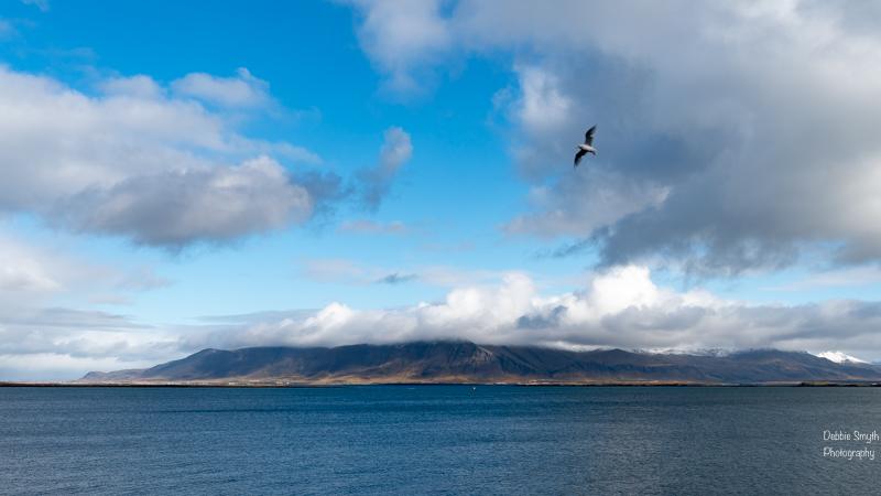 ReykjavikA9A0103620180211-1