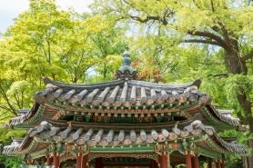 SeoulA9A0460520180211-1-2