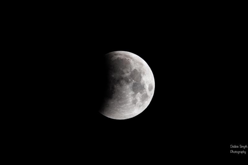 moona730537920180211-1