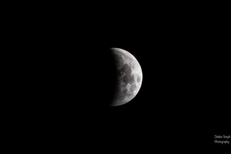 moona730538220180211-1-3