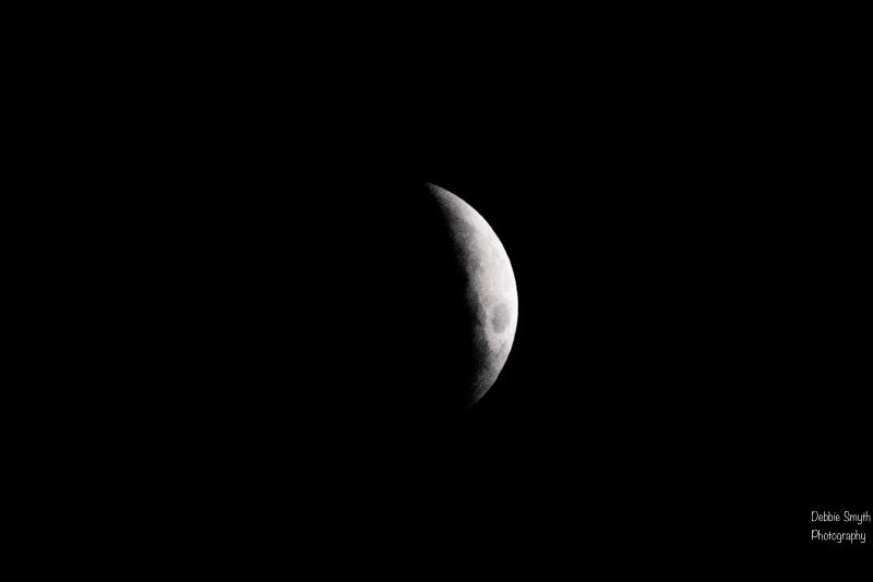 moona730538420180211-1-2
