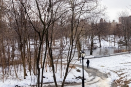 A man in the Central Park's snow