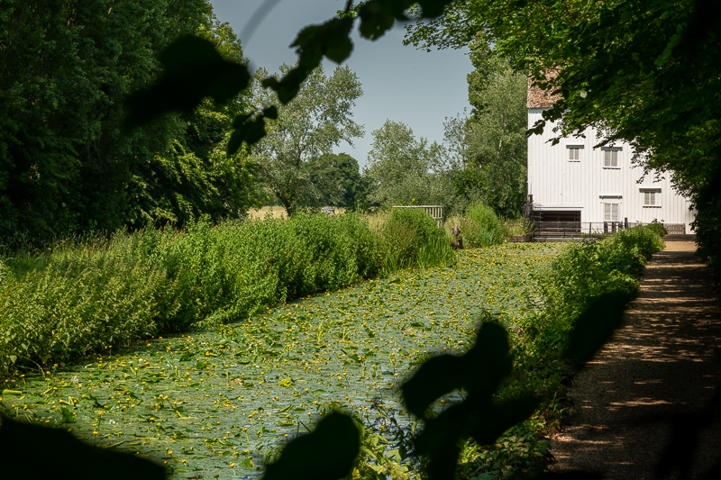 White watermill building on lily-covered water