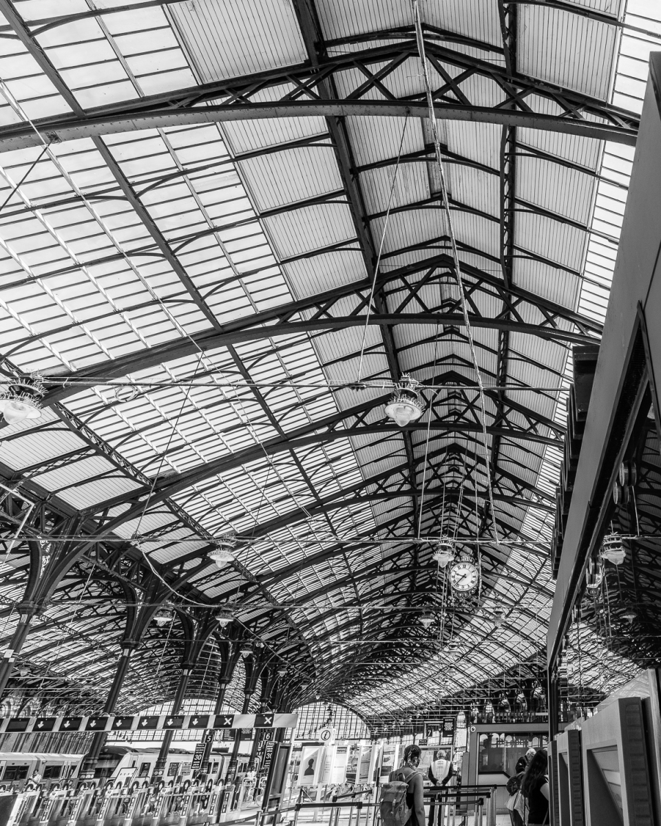 Curving glass roof over Brighton station