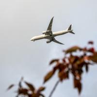 It's plant spotting versus plane spotting