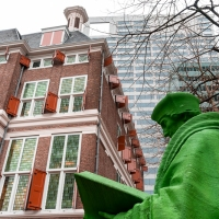 Erasmus in green