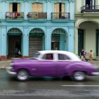 Purples in Cuba