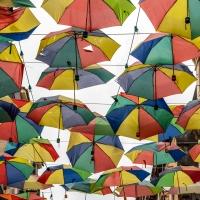 Lines of umbrellas